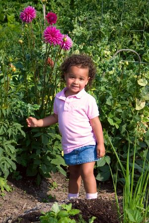 A young 2-year-old mixed-race girl enjoys the summer flower garden. Stock Photo - 5253458