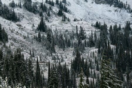 switchback: A mountain switchback road winds its way through Mount Rainier National Park on a snowy fall day.