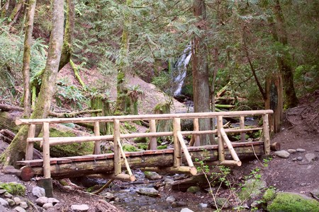 Coal Creek Falls and the Wooden Foot Bridge near Newcastle, Washington, in the Tiger Mountain State Park. Stock Photo - 6876221
