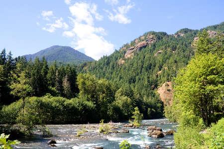 River nature view 版權商用圖片