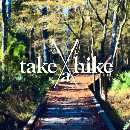 hike: A redwood path invites you to Take A Hike on the boardwalk in the autumn forest.