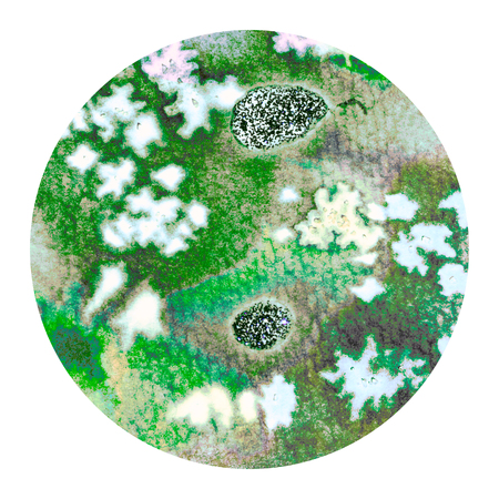 excite: Abstract green colorful watercolor wash with the salt technique, round sticker. Stock Photo