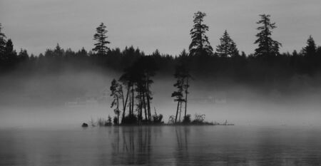A small island floats over the foggy frozen lake, monochrome image, dark mood.