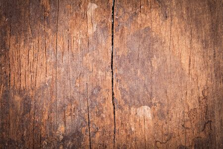 wood surface: surface and background of old sheet wood