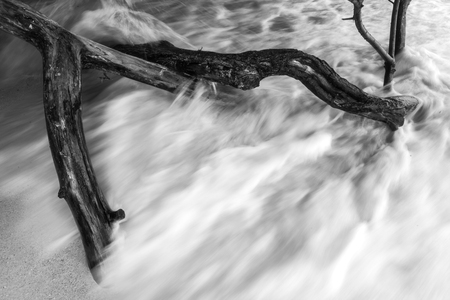 Blurry background abstract black & white photo wave breaking tree and sand. Stock Photo