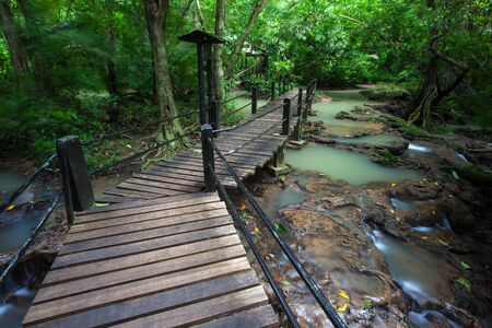 walkway wooden for study in nature rainforest on national park at Thailand.