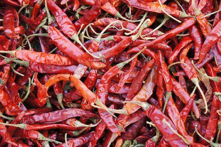 Dried Thai Red Chilli photo