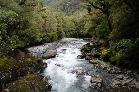 baratro: The Chasm - paesaggio fluviale della foresta pluviale e in Nuova Zelanda Archivio Fotografico