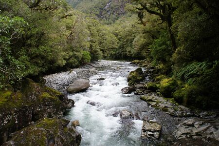 The Chasm - rainforest and river landscape in new zealand photo