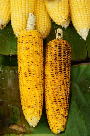 Grilled Yellow Sweet Corns on Bana Leaf