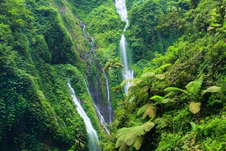 Madakaripura Waterfall - Deep Forest Waterfall in East Java, Indonesia Stock Photo