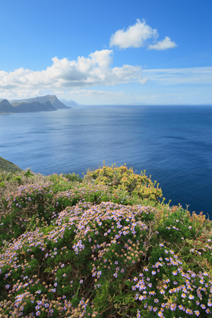 cape of good hope: View from Cape of Good Hope
