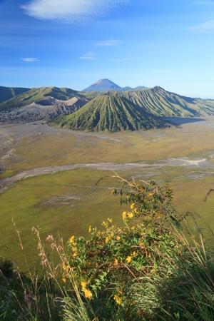tengger: Bromo Volcano Mountain in Tengger Semeru National Park, East Java, Indonesia