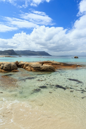 new zealand beach: Boulders Beach -  Cape Town,South Africa