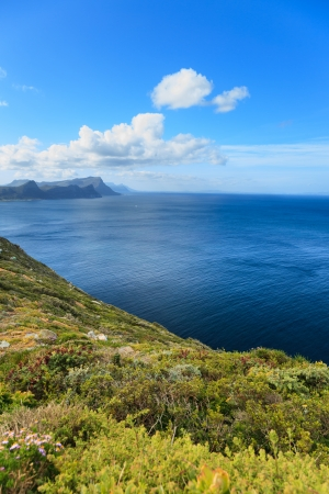 Scenery Aroud Cape of Good Hope, Cape Town, South Africa photo