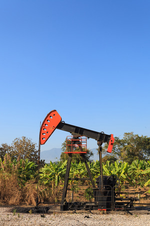 beam pump: Oil Pump Jack (Sucker Rod Beam) in The Banana Field on Sunny Day Stock Photo