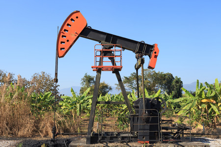 sucker: Oil Pump Jack (Sucker Rod Beam) in The Banana Field on Sunny Day Stock Photo