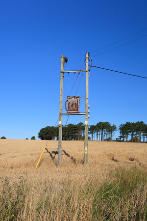 utility pole: Electricity Transformer mounted on a Utility Pole in the middle of farmer field