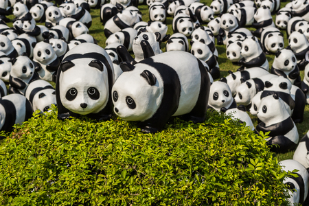 environmental issues: Bangkok, Thailand - March 12, 2016: 1600 PANDAS+ World Tour arrive in Bangkok to promote conservation and awareness of environmental issues