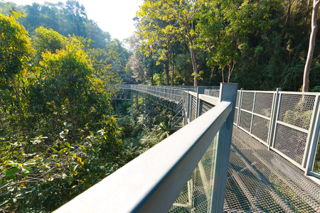 Canopies: The Canopy walkway at Queen Sirikit Botanic Garden in Mae Rim, Chiang Mai, Thailand