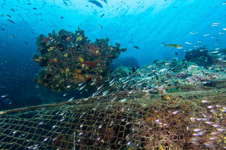 Illegale visserij in het mariene nationale park. Visnet dekken het koraalrif in het mariene nationale park van Thailand Stockfoto