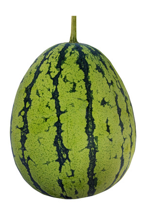 water melon: water melon on white background