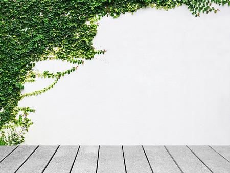 Houten plank de witte muur groene klimop plant.