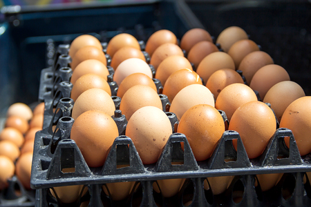 preserved: Eggs preserved in panel wholesale market Stock Photo