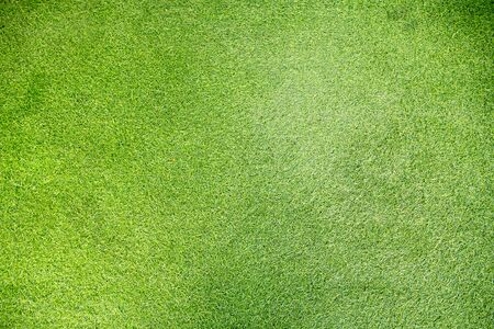 a wound: green lawn background Stock Photo