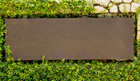 wooden sign on the wall covered with ivy.