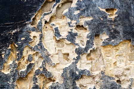 drywood: Closeup of texture of termite damaged wood