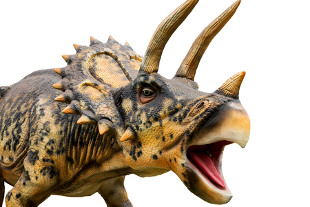 Dinosaur triceratops and monster model Isolated white background Standard-Bild