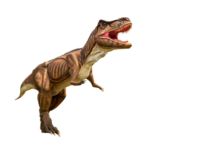 Dinosaur tyrannosaurus and monster model Isolated white background