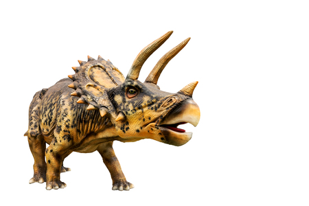 Dinosaur triceratops and monster model Isolated white background Imagens