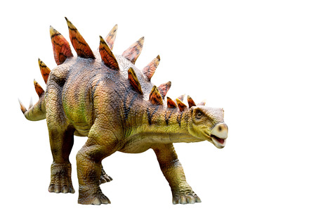 Dinosaur stegosaurus and monster model Isolated white background ,with clipping path Standard-Bild