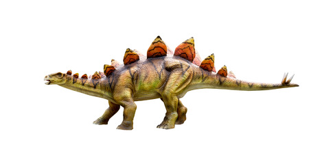 Dinosaur stegosaurus and monster model Isolated white background ,with clipping path Stock Photo