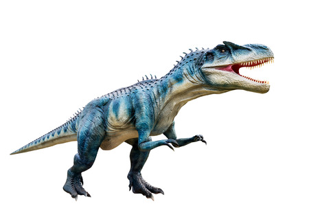 Dinosaur allosaurus and monster model Isolated white background ,with clipping path