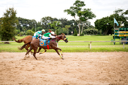racetrack: Jockey and horse taking the lead in a race