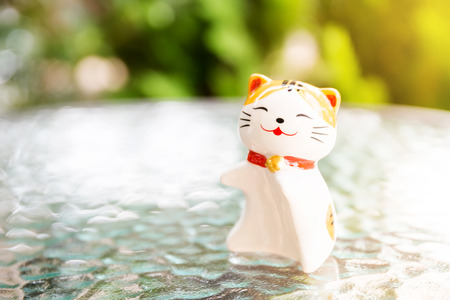Ceramic lucky cat, on the glass table