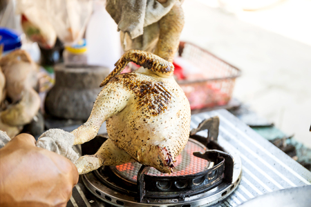Plucking the chicken on the gas stove Stock Photo