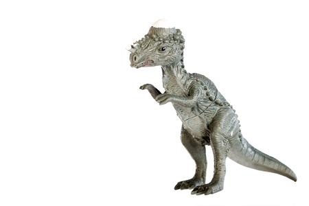Pachycephalosaurus dinosaurs toy isolated on white background Stock Photo