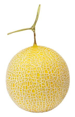 Cantaloupe melon in full fruit showing its net rind pattern, isolated on white background