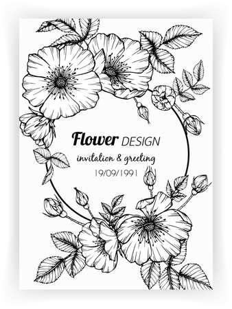 Greeting card with dog rose flower and leaf hand drawn botanical illustration.