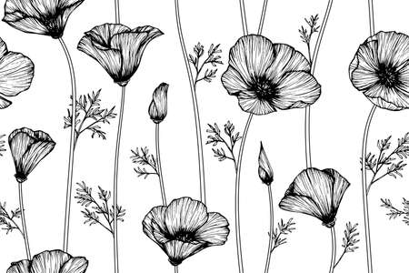 Seamless pattern california poppy flower and leaf hand drawn botanical illustration with line art.