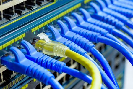 UTP Cables connected to network switch ports