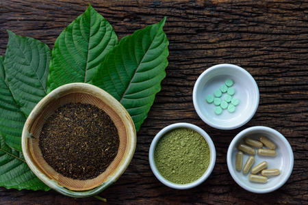 Mitragyna speciosa (kratom) leaves with medicine products in powder, capsules and tablet in white ceramic bowl with wooden texture on background Standard-Bild