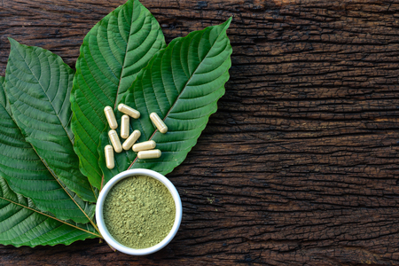 Mitragyna speciosa or kratom leaves with medicinal products in capsules and powder in white ceramic bowl and wooden table, top view Stock Photo - 97327860