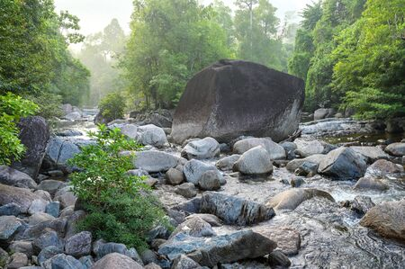Landscape of water creek in forest, stream water through rock and soft foggy over forest, Phatthalung province, Thailand.