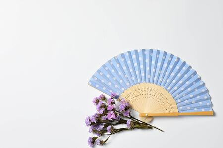 Japanese folding fan with dry flowers on white background Фото со стока