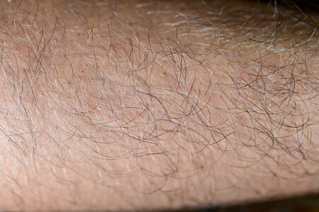 Closeup of man arm skin with hairs